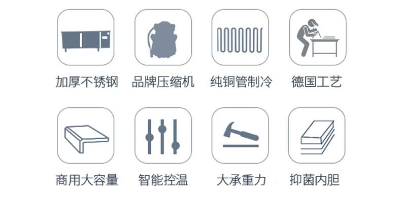 加厚不锈钢、品牌压缩机、纯铜制冷、德国工艺、商用大容量、智能控温、大承重力,抑菌内胆。